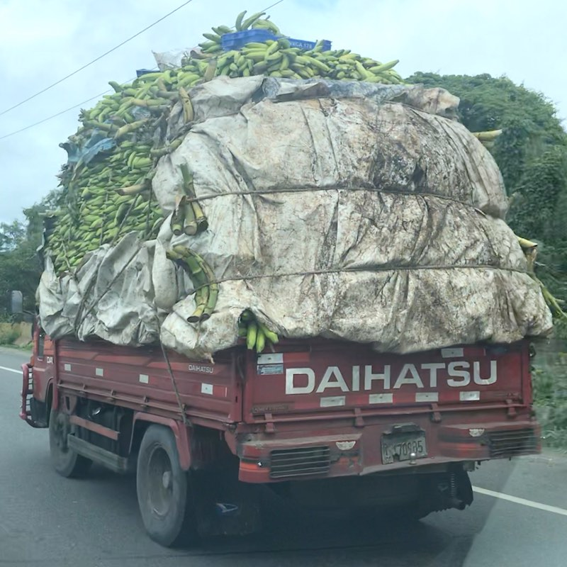 Banana Transporter in the Dominican Republic
